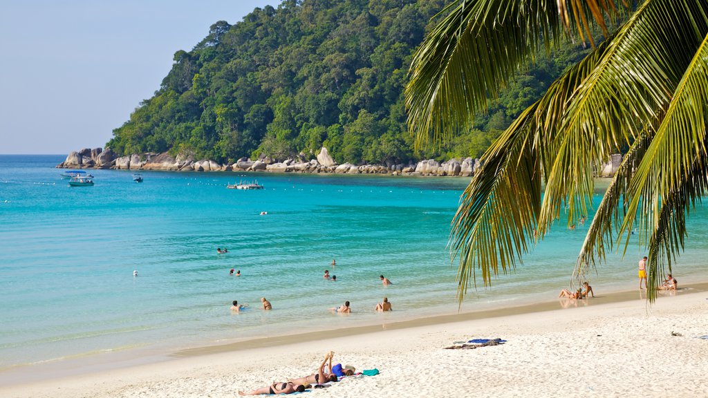 Pulau Perhentian Besar which includes swimming, a beach and tropical scenes