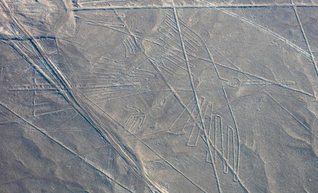Il disegno del condor, ben visibile dall'alto. By Diego Delso  , via Wikimedia Commons
