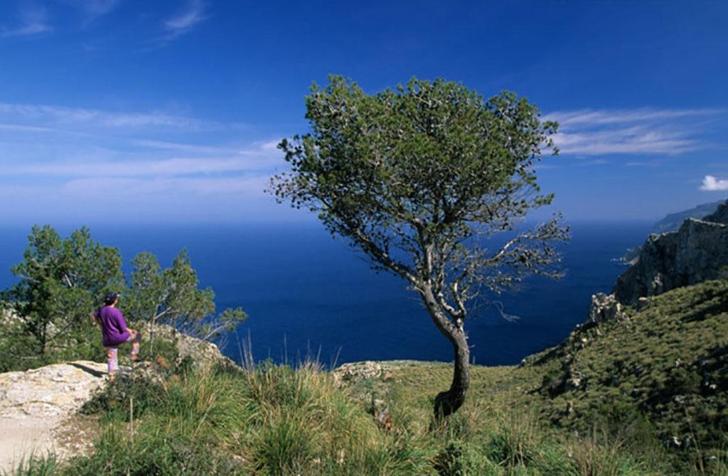 Scorcio di mare dalla Serra de Tramuntana sull'isola di Maiorca. Photo credit: Alamy