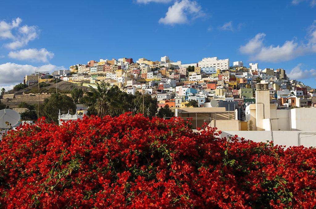 Le caratteristiche case colorate di Las Palmas