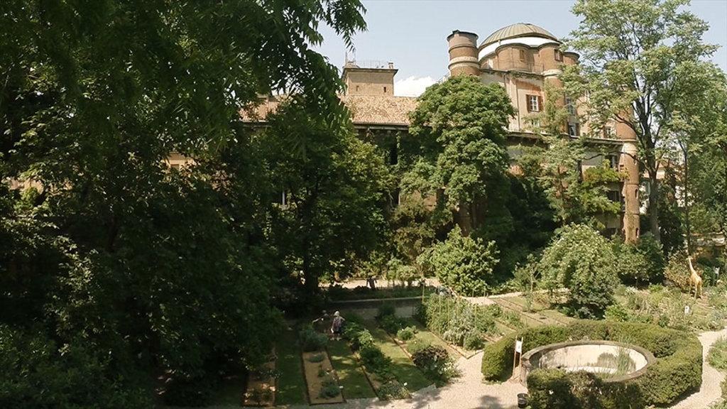 Vista dell'Orto Botanico di Brera dell'Universita' degli Studi di Milano, con alcune aiuole e una delle due storiche vasche ellittiche. Sullo sfondo il Palazzo di Brera.