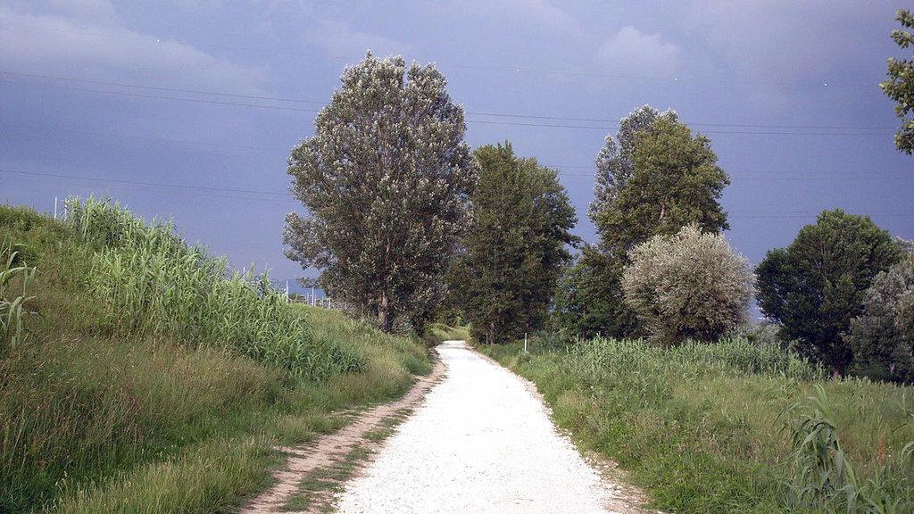 La pista ciclabile che collega il Parco dei Renai con il Parco delle Cascine a Firenze - Di Nick46 - Opera propria, Pubblico dominio, https://commons.wikimedia.org/w/index.php?curid=4181258