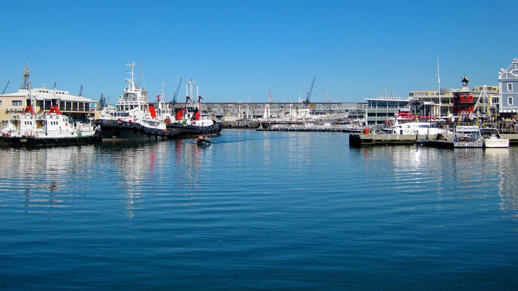 Victoria and Alfred Waterfront showing boating, a ferry and a marina