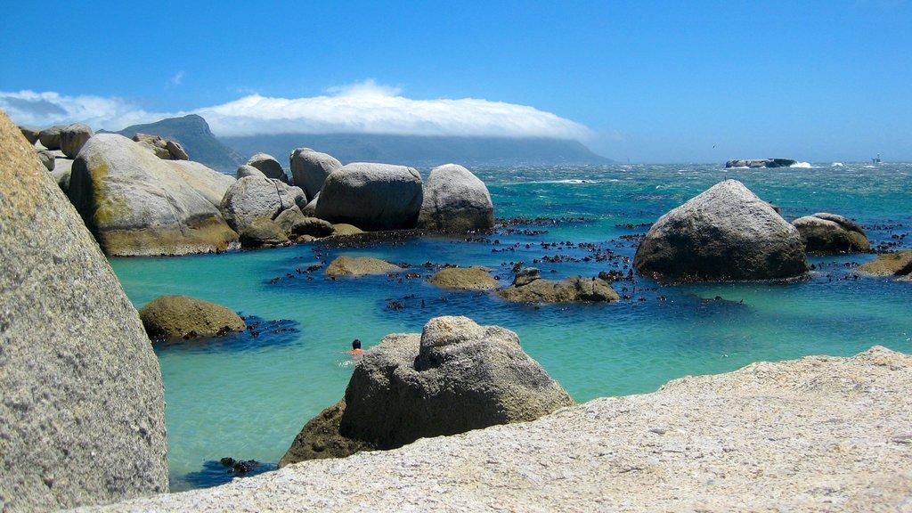 Boulders Beach que incluye una playa de guijarros, escenas tropicales y vistas de paisajes