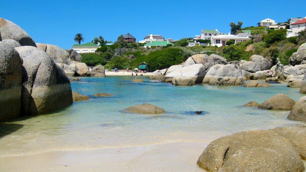 Boulders Beach que incluye escenas tropicales, costa rocosa y una ciudad costera
