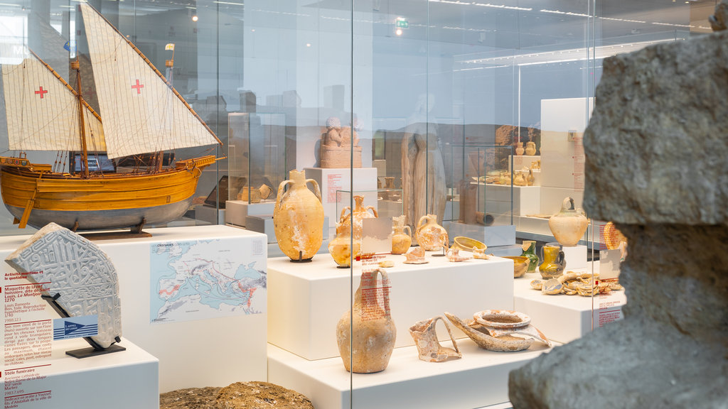 Marseille History Museum showing interior views and heritage elements