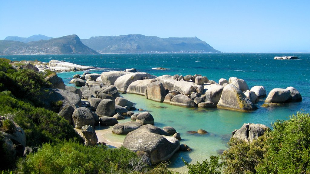 Boulders Beach which includes rugged coastline and landscape views