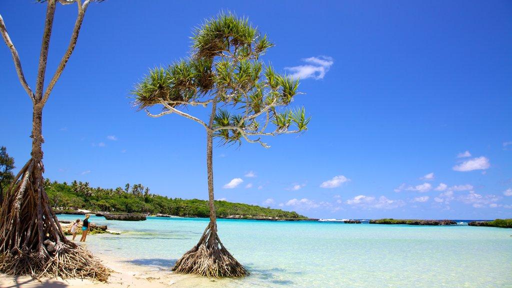 Port Vila featuring tropical scenes, a beach and landscape views