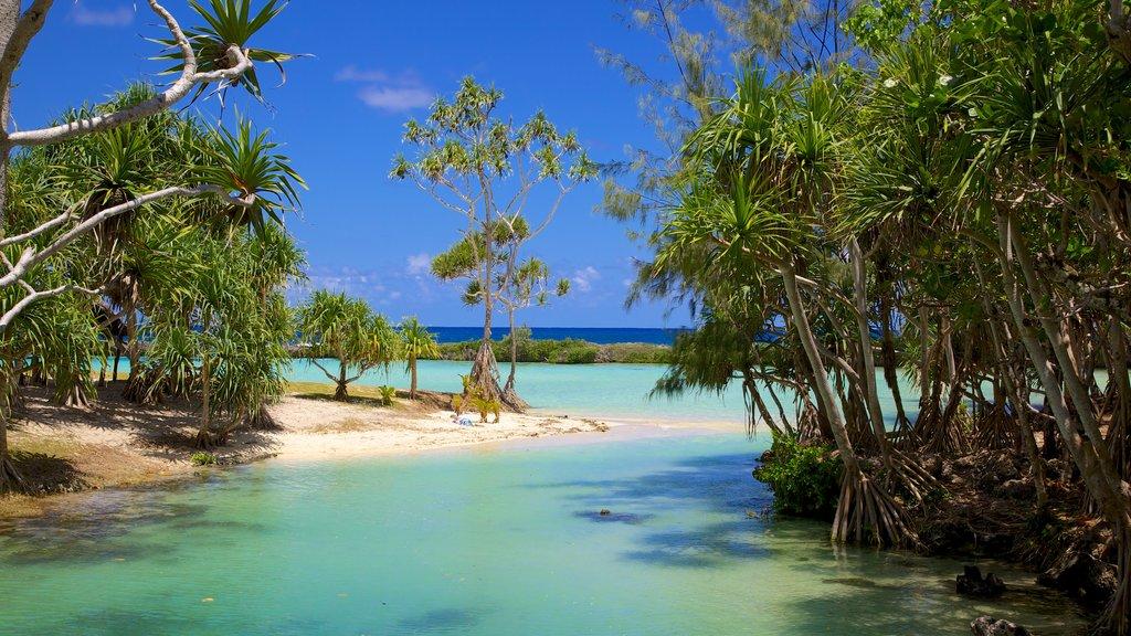 Port Vila showing a sandy beach, landscape views and tropical scenes