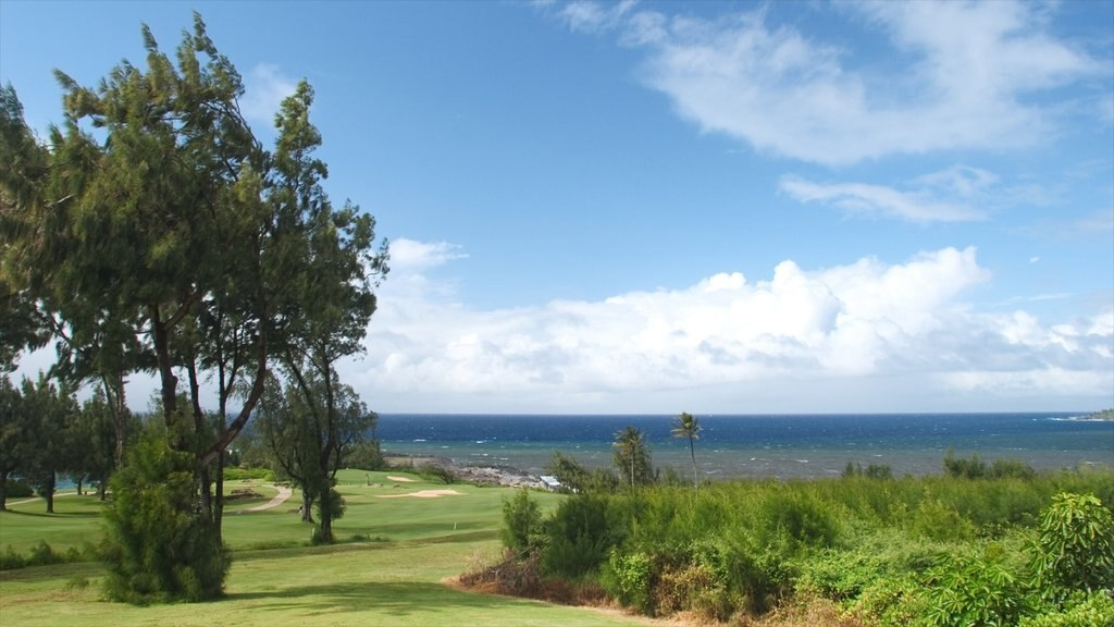 Kapalua Beach showing golf and island images