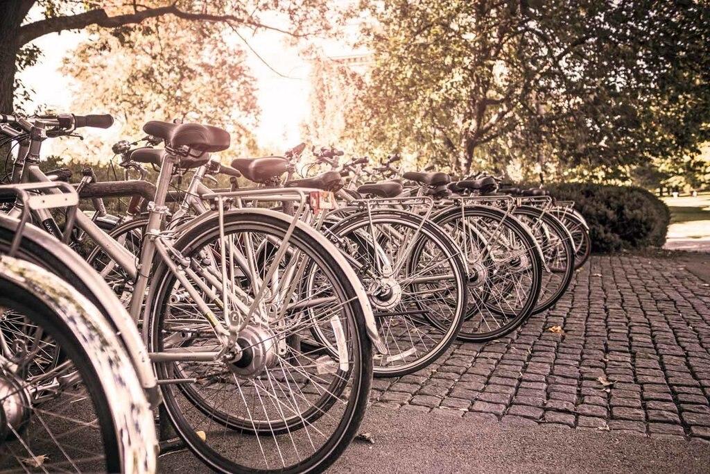Si può facilmente comprare una bicicletta oppure noleggiarla se si rimane anche solo pochi giorni. (EDAM)