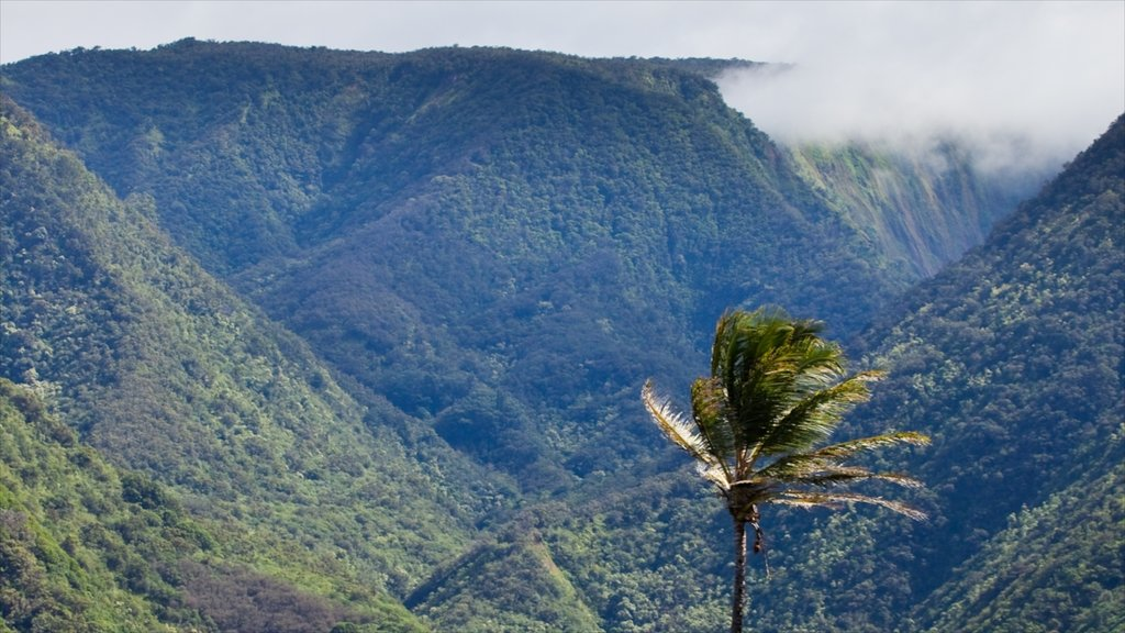 Pololu Valley Overlook featuring landscape views, mountains and views
