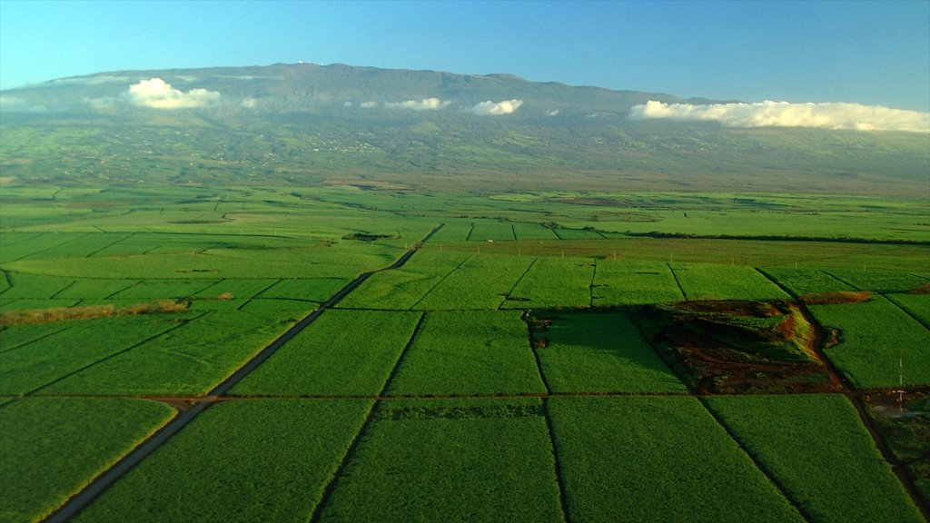 Maui Island featuring landscape views and farmland