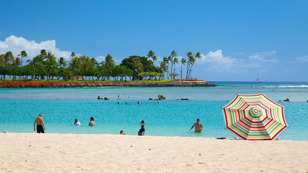 Ala Moana Beach Park featuring swimming, a sandy beach and tropical scenes