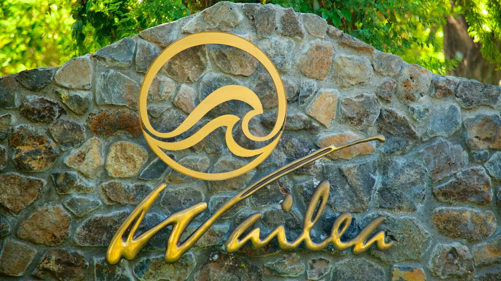 Wailea Beach featuring signage