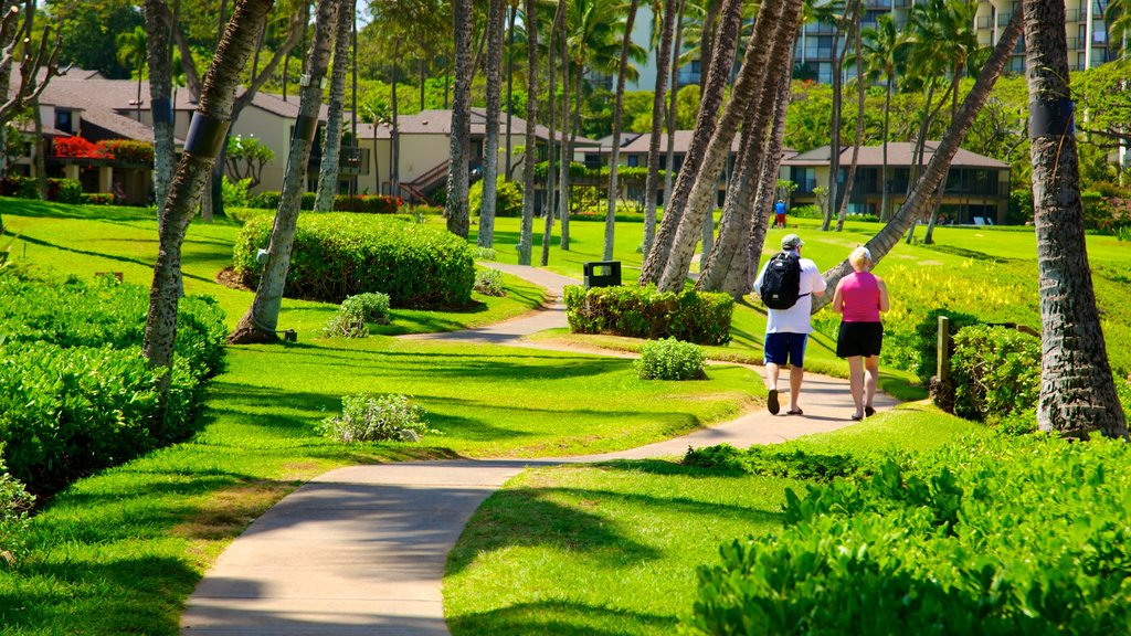 Wailea Beach featuring tropical scenes and a park as well as a couple