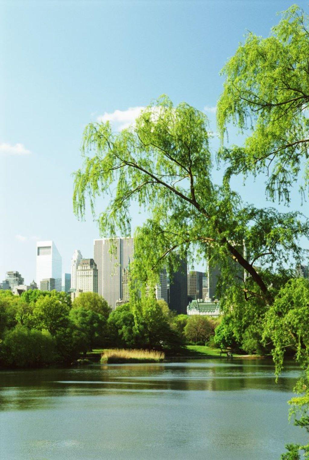 Central park a new york 12 cose da sapere for Dove soggiornare a new york