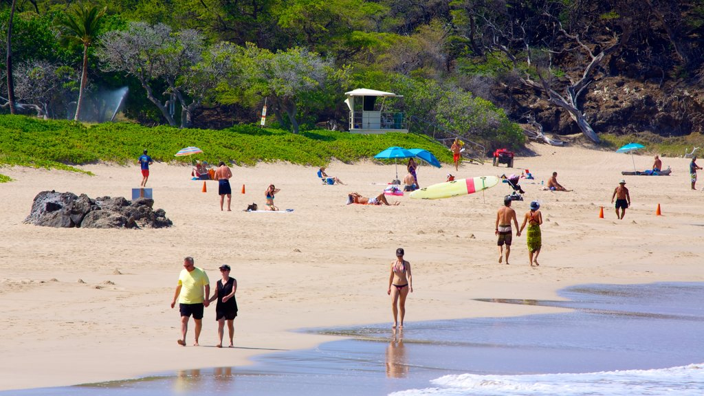 Hapuna Beach State Park showing a beach as well as a couple