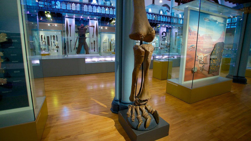 The Hunterian which includes interior views and art