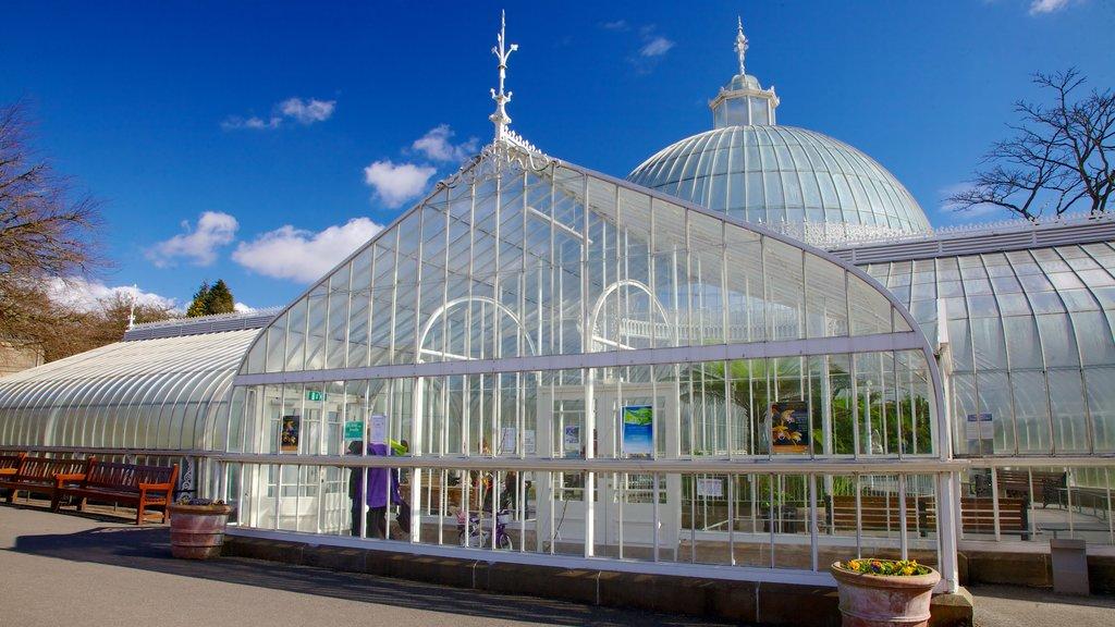 Botanic Gardens showing a garden