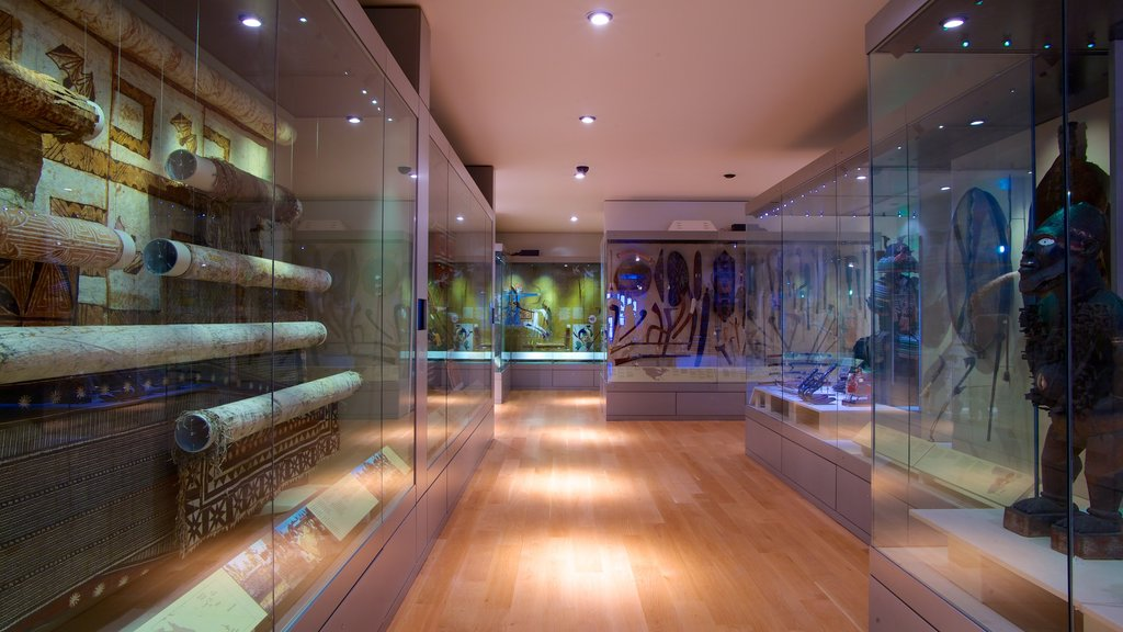 Manchester Museum which includes interior views and art