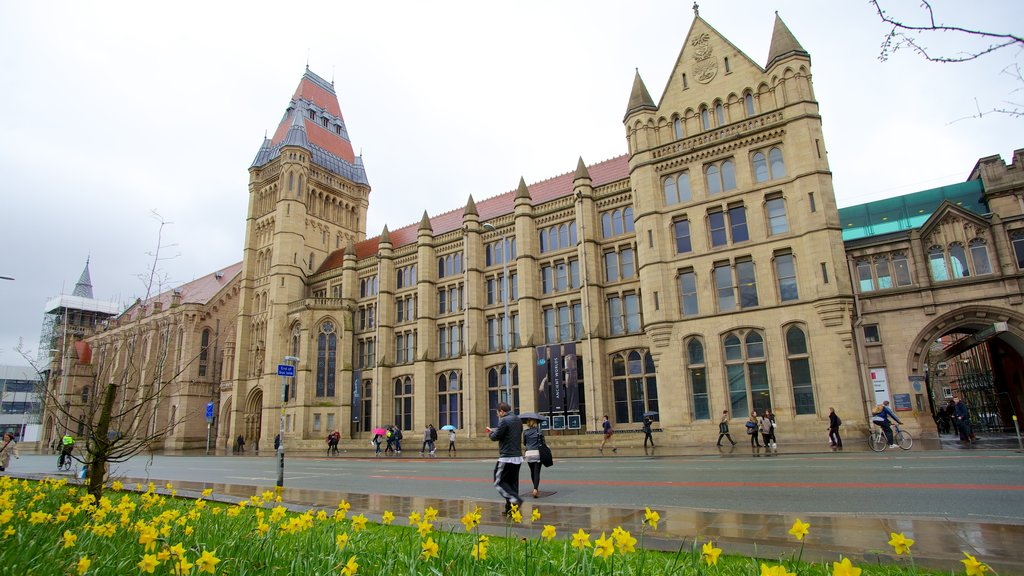 Manchester Museum which includes street scenes, heritage architecture and a city