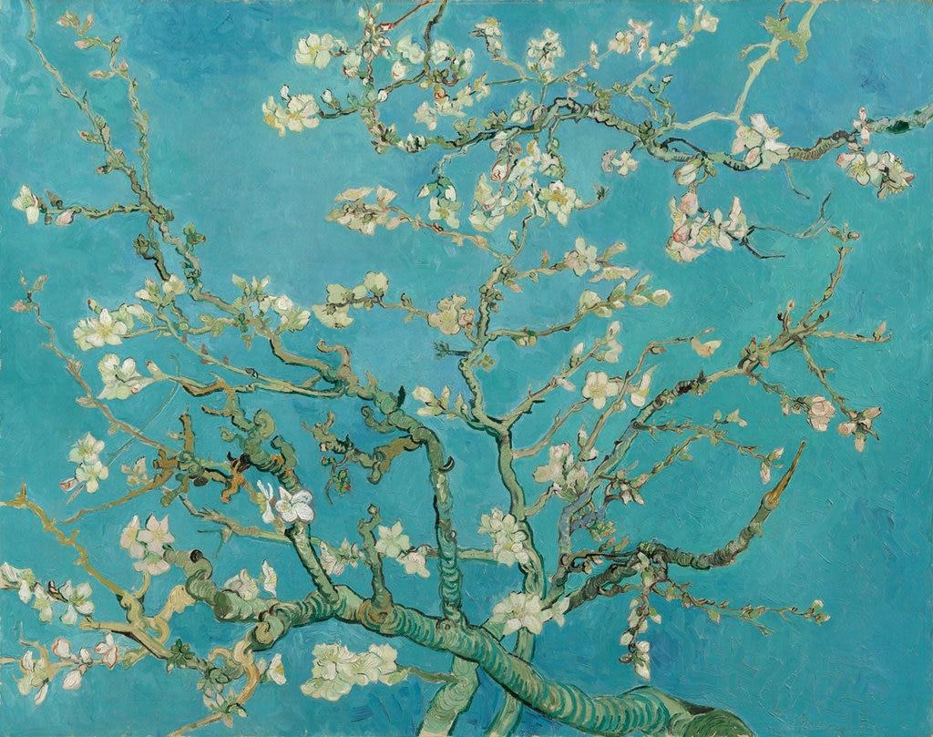 Fiori Quadri Famosi.I 15 Quadri Piu Belli Del Museo Van Gogh Di Amsterdam