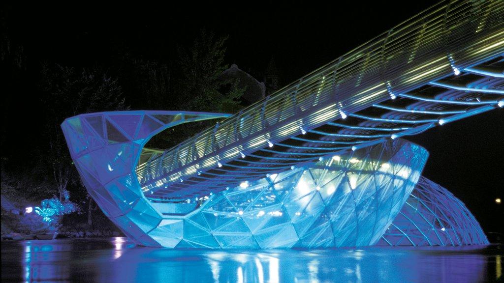 Graz showing night scenes, a bridge and modern architecture