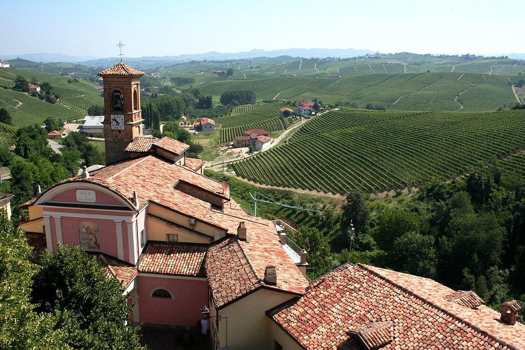 Vigneti attorno a Barolo - By Megan Mallen (Flickr: Piemonte, Italy)  , via Wikimedia Commons