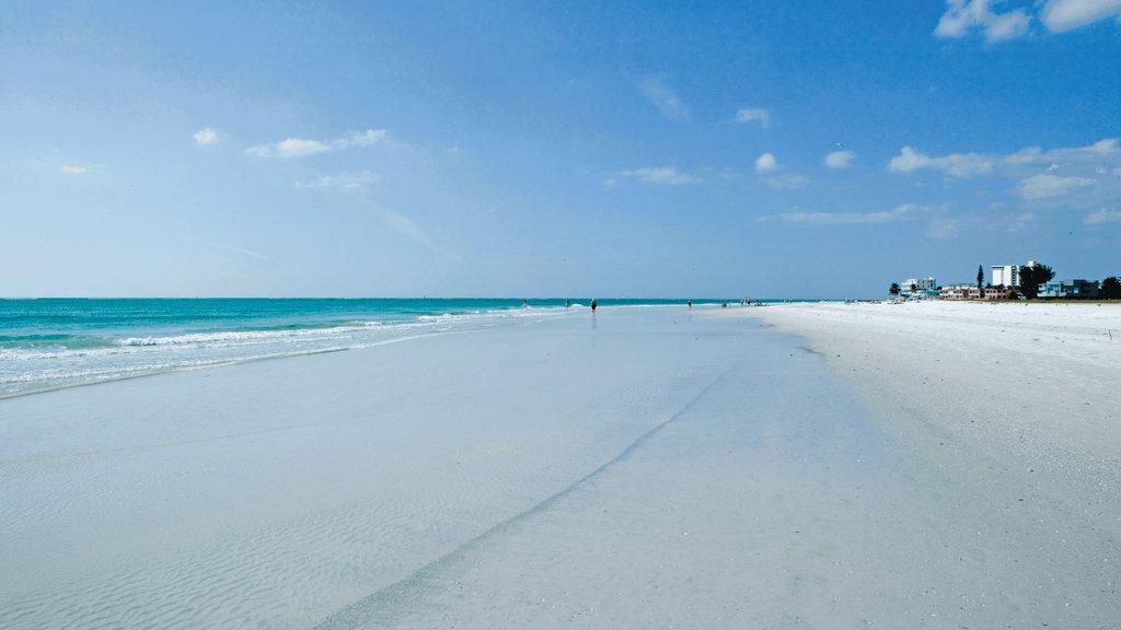 Siesta Key showing a sandy beach