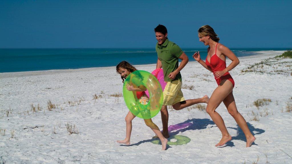 Siesta Key featuring a sandy beach as well as a family