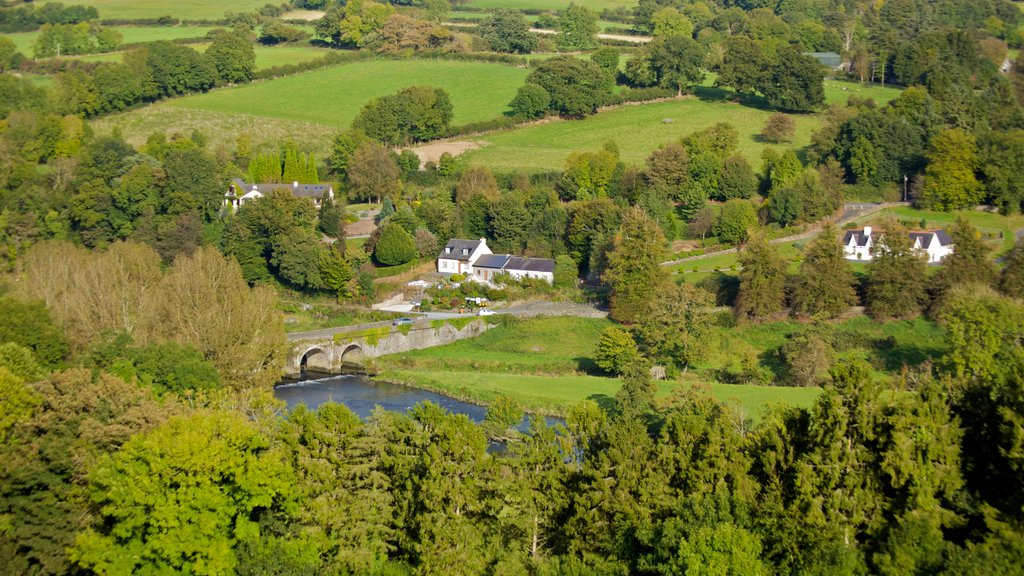 Ireland featuring landscape views, a small town or village and forests