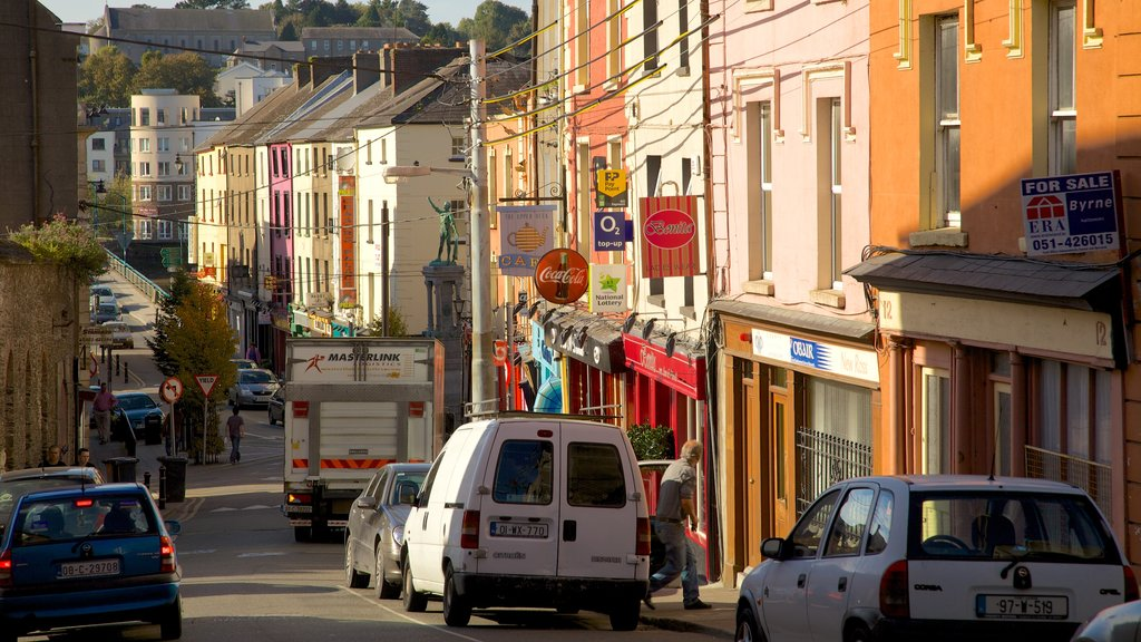 New Ross featuring heritage architecture and street scenes