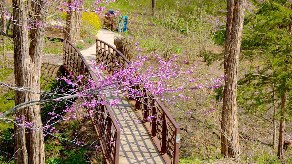 Overland Park Arboretum and Botanical Gardens featuring a bridge and a park