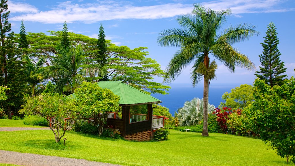 Maui Island featuring landscape views, a park and tropical scenes