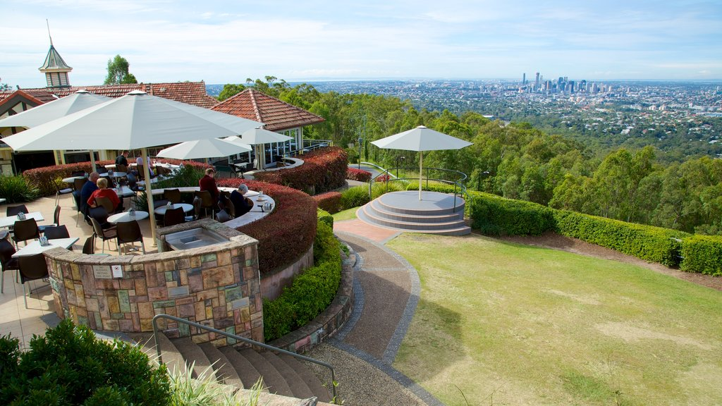 Mt. Coot-Tha showing a city, views and a garden