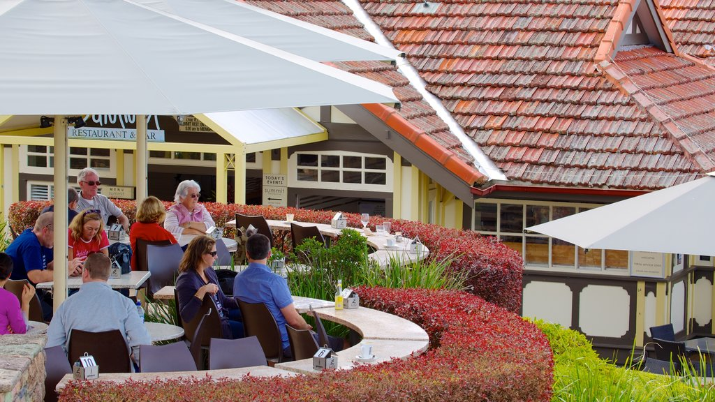 Mt. Coot-Tha which includes outdoor eating