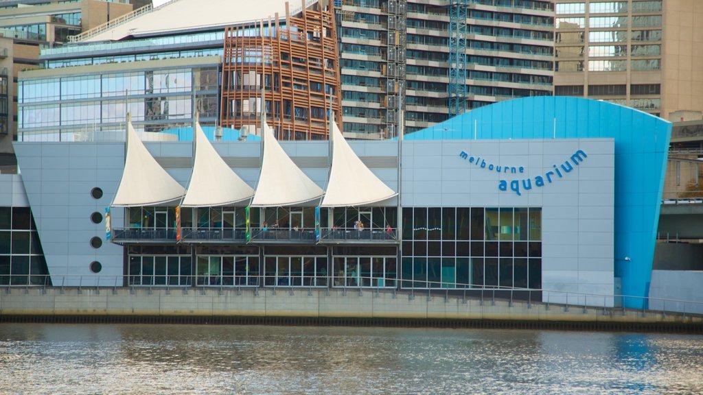 Melbourne Aquarium que incluye vida marina, una ciudad y señalización
