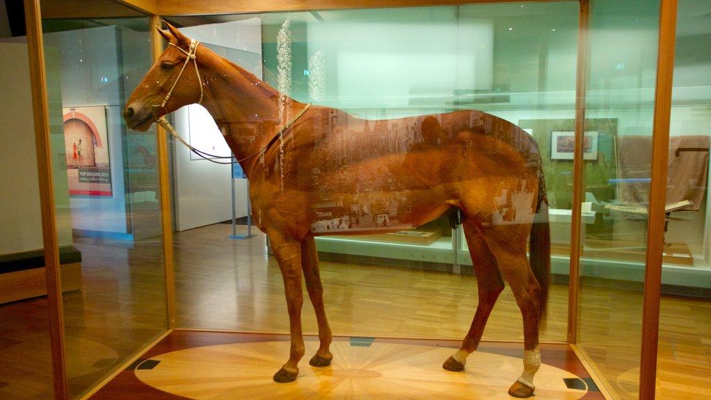 Museo de Melbourne que incluye vistas interiores