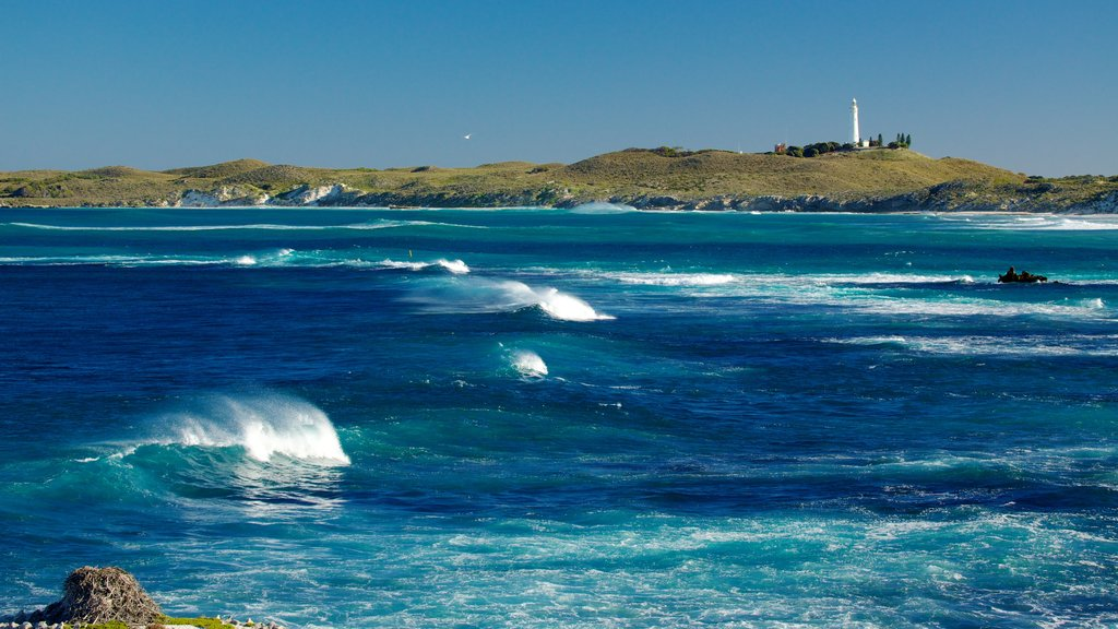 Rottnest Island showing waves and skyline