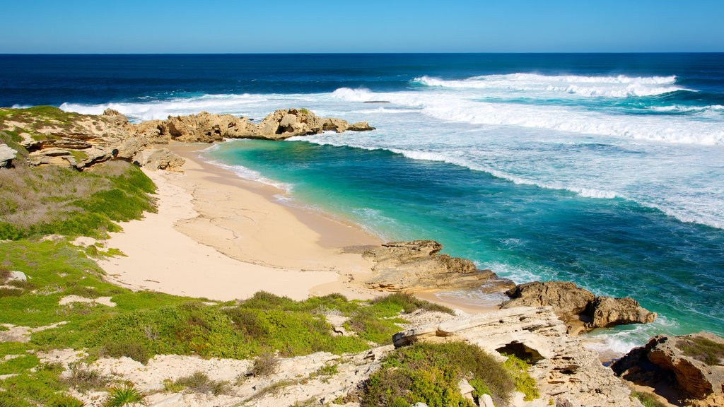 Rottnest Island which includes a beach and landscape views