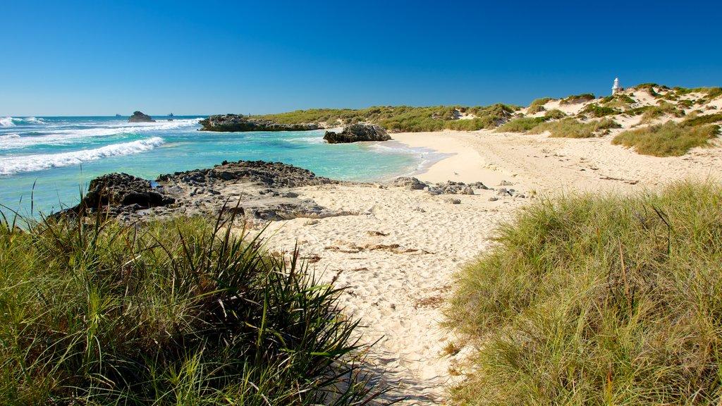 Rottnest Island featuring a sandy beach and landscape views