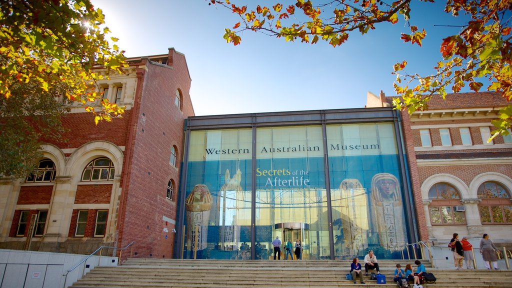 Western Australian Museum showing a city and signage