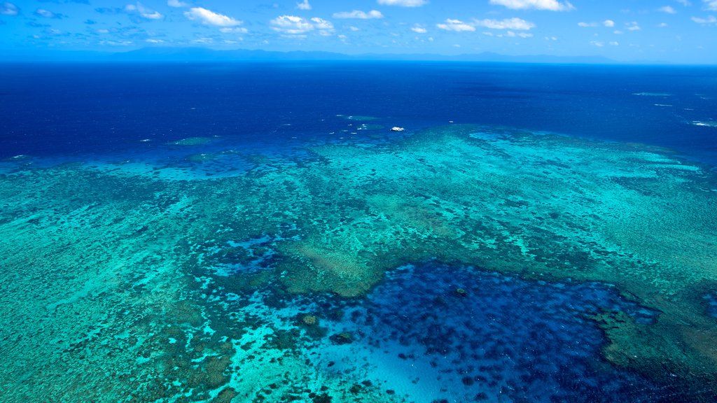 Great Barrier Reef showing coral and landscape views