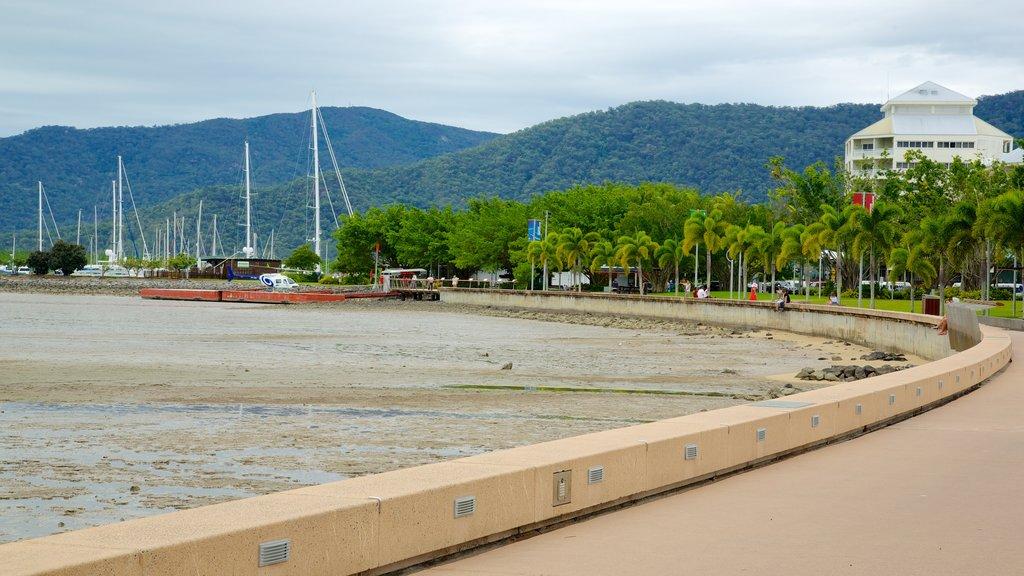 Playas de Cairns mostrando una playa y vistas generales de la costa