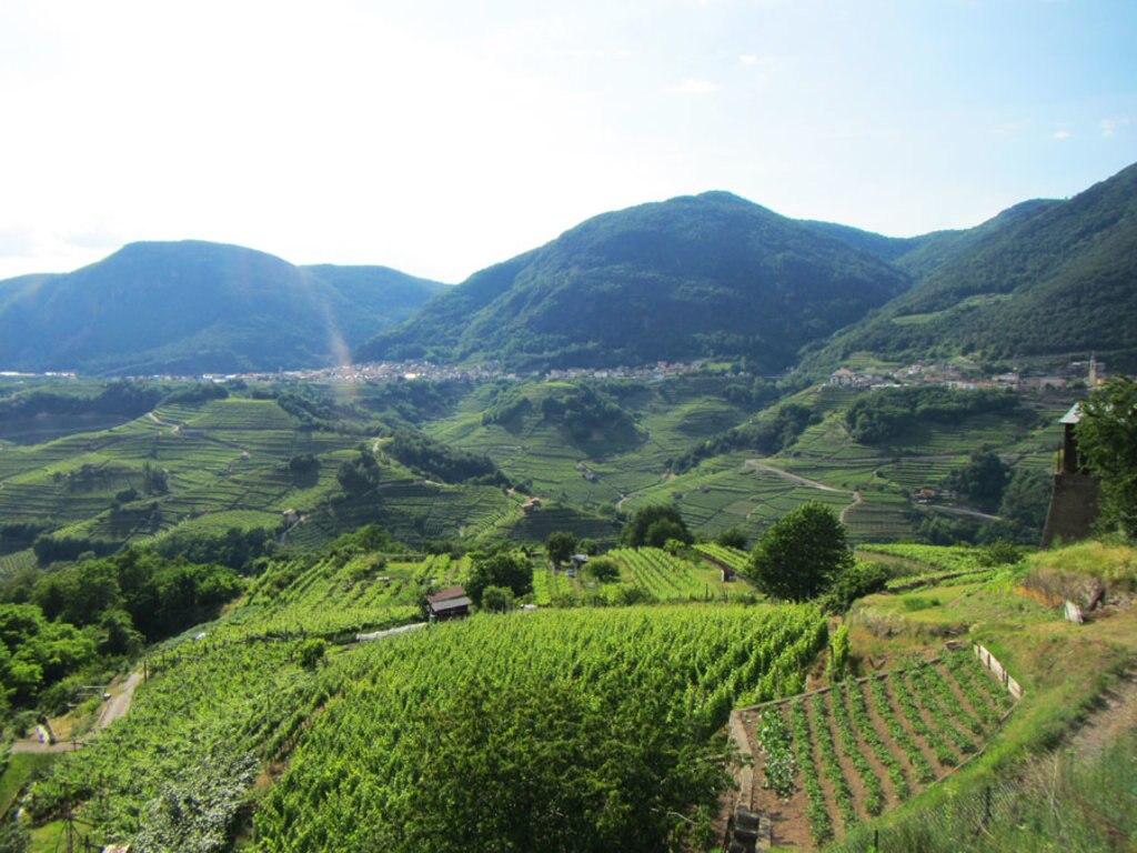 Strada del vino in trentino itinerario in 14 tappe for Soggiornare a trento