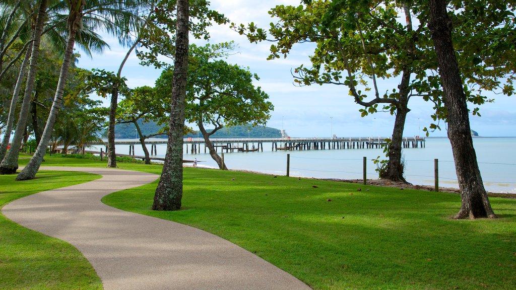 Palm Cove Beach que incluye un parque y vistas generales de la costa