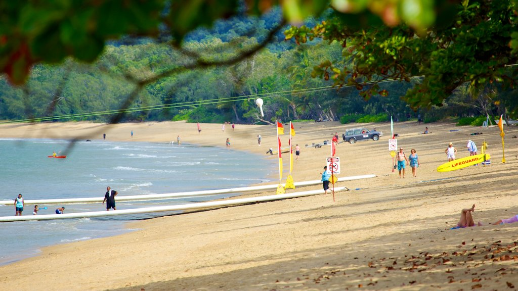 Palm Cove Beach mostrando escenas tropicales, una playa de arena y natación