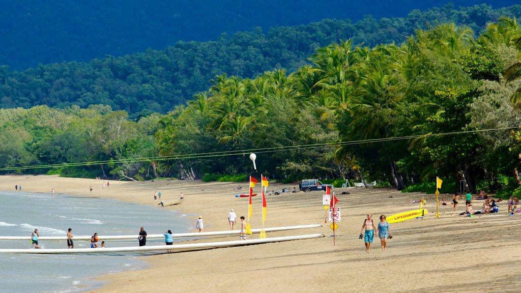 Palm Cove Beach que incluye escenas tropicales, natación y una playa de arena