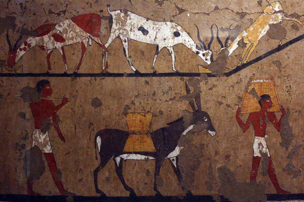 Dettaglio di una pittura parietale rinvenuta nella Tomba di Ifi e Neferu - Foto di Margherita Reboldi - https://www.flickr.com/photos/155545126@N07/36128321773/in/album-72157688373828955/